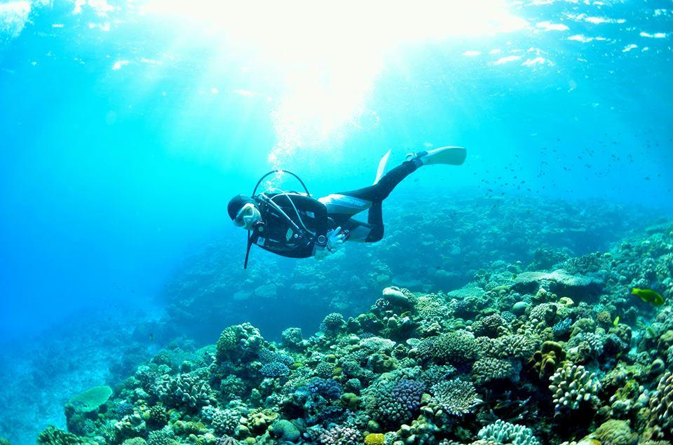 宮古島のダイバー